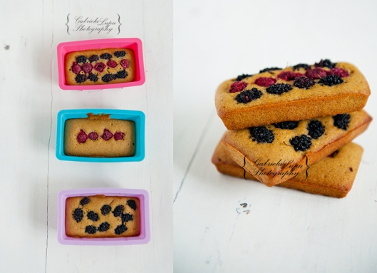 wild berries cakes