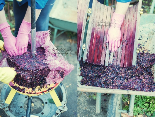 traditional wine making process