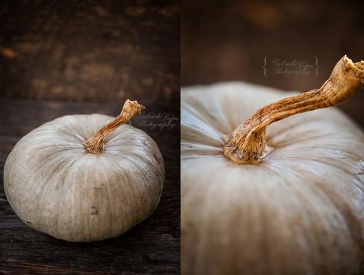queensland blue pumpkin